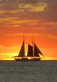 St Maarten Gourmet Dinner Sailing Cruise