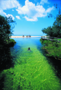 2-Day Fraser Island Tour from Hervey Bay