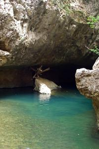 Belize Cave Tubing Adventure from San Ignacio