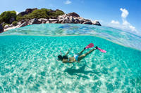 Snorkel in Carlisle Bay*