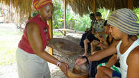 Rastafari Indigenous Village Tour from Negril