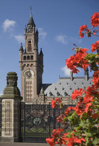 Private Tour: The Hague Walking Tour Including Peace Palace Visitors Center