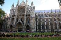 Highlights of London Walking Tour Including Afternoon Tea