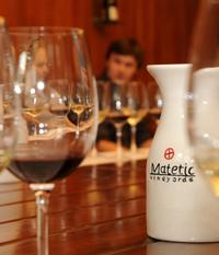 Matetic Winery Day Trip in San Antonio Valley from Santiago