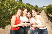 Santiago Super Saver: Concha y Toro plus Vina del Mar and Valparaiso Day Trip