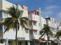 Miami City Bus Tour