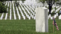 Arlington Cemetery and DC Highlights Tour