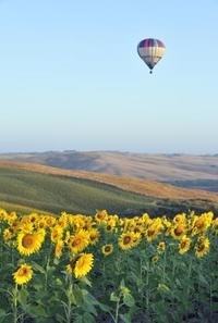 Hot Air Balloon Flight Over Tuscany from Siena