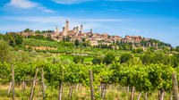 Private Tuscany Tour from Florence Including Siena, San Gimignano and Chianti Wine Region
