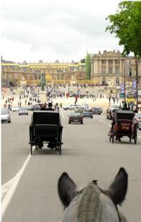 Private Tour: Versailles Horse and Carriage Ride