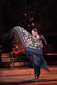 Opera and Flamenco Performance in Barcelona at Teatre Poliorama or Palau de la Música Catalana
