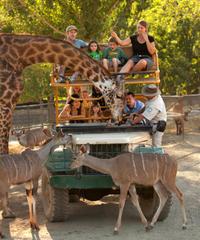 Safari West Sonoma Admission and Jeep Tour