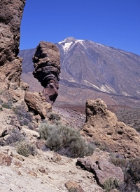 Admire the landscapes of Tenerife