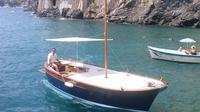 Capri to Amalfi Coast Private Boat Excursion