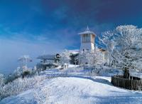 2-Day Yongpyong Ski Resort Tour from Seoul