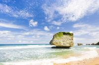 Barbados Island Tour: Bathsheba and Sunbury Plantation*