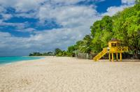 Harrison's Cave and Bathsheba Tour in Barbados
