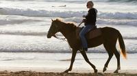 Horse Sunset Ride