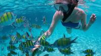 Peterson Cay Snorkel Adventure from Freeport*