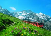 3-8 Day Jungfrau Travel Pass