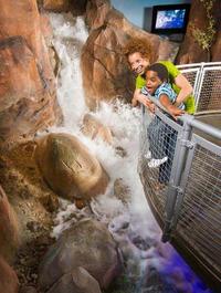 Springs Preserve Admission