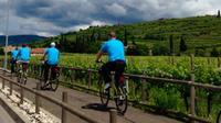 Verona and Countryside Easy Bike Tour