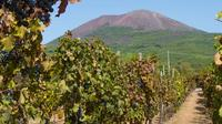 Mount Vesuvius, Winery Tour and Wine Tasting from Sorrento