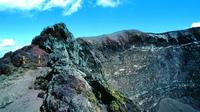 Mt Vesuvius Half-Day Tour from Sorrento