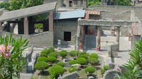 Private Tour: Herculaneum and Mt. Vesuvius Day Trip from Sorrento