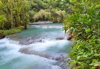 Montego Bay Shore Excursion: Dunn's River Falls Tour*