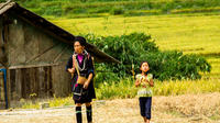 3-Day Sapa and Hill Tribes Biking Tour from Hanoi with Accommodation