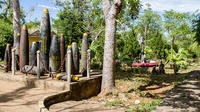 3-Day Tour of Central Vietnam Including Hue, Vinh Moc, and Phong Nha Paradise Cave from Hoi An