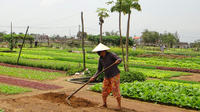 Half-Day Farming Experience from Hoi An