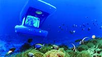 Blue Safari Submarine - , , Mauritius