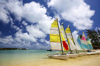 Full-Day Bénitiers Island and Dolphin Watching Cruise with Lunch - , , Mauritius