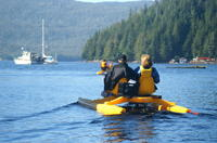 Ketchikan Shore Excursion: Ward Cove Wildlife Seacycle Tour