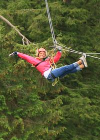 Ketchikan Shore Excursion: Rainforest Zipline Adventure