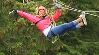 Ketchikan Zipline Adventure