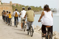 Mallorca Shore Excursion: Palma Bike Tour Including Palma Cathedral and Parc de la Mar
