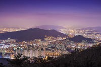 Private Night Tour Of Busan