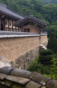Private Tour of Junam Wetlands and Haeinsa Temple