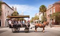 Learn the history of Charleston on this carriage ride.*