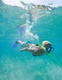 Shete Boka National Park and Playa Lagun Snorkel Adventure in Curacao