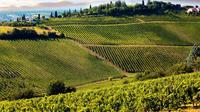 Chianti Half-day Wine Tour in the Tuscan's Hills from Pisa