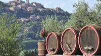 Wine and Food Tour in the Lucca Countryside by Minivan