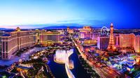 Los Angeles to Las Vegas Private Roundtrip Flight