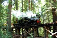 Roaring Camp Steam Train Through Santa Cruz Redwoods