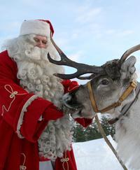 Lapland Reindeer Sleigh Ride to Santa Claus Village from Rovaniemi