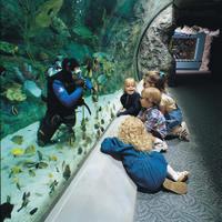 Aquarium of the Pacific General Admission