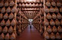 Private Emilia Romagna Food Tour from Milan